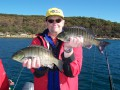 Sydney Harbour Report, By Craig McGill - 10 08 11