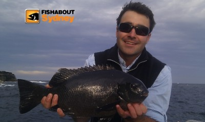 Sydney Harbour Pics Winter / Spring 2012