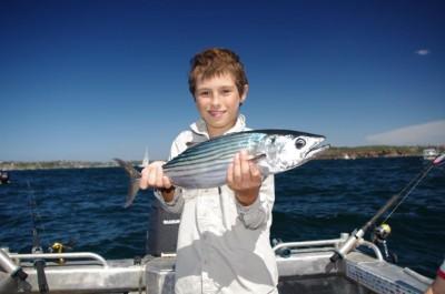 Sydney Fishing October 2013, by Craig McGill