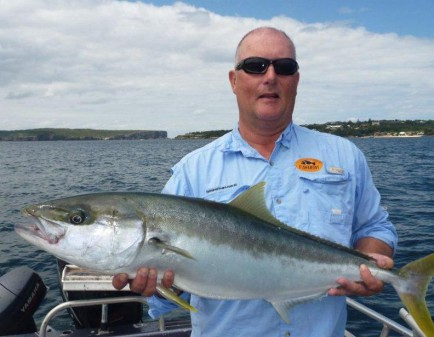 A nice Sydney Harbour King