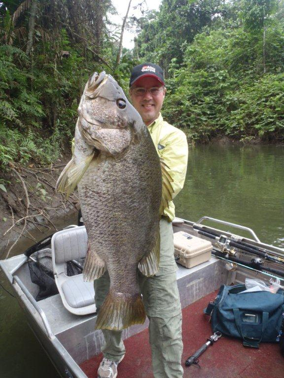 PNG Black Bass